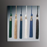 "Junior 5"" long Graduation Tassels"